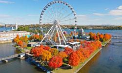 7. Ride The Ferris Wheel
