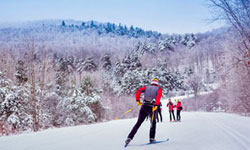 Skiing in The Gatineau Hills
