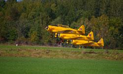 Vintage Wings of Canada